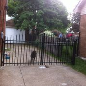 Gate Installation in Windsor, Ontario